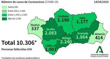 coronavirus malaga