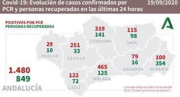 coronavirus malaga 19 septiembre