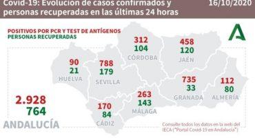 263 contagios malaga