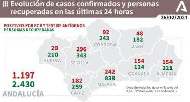 242 contagios málaga